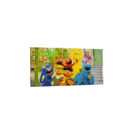 Sesame Street Towel